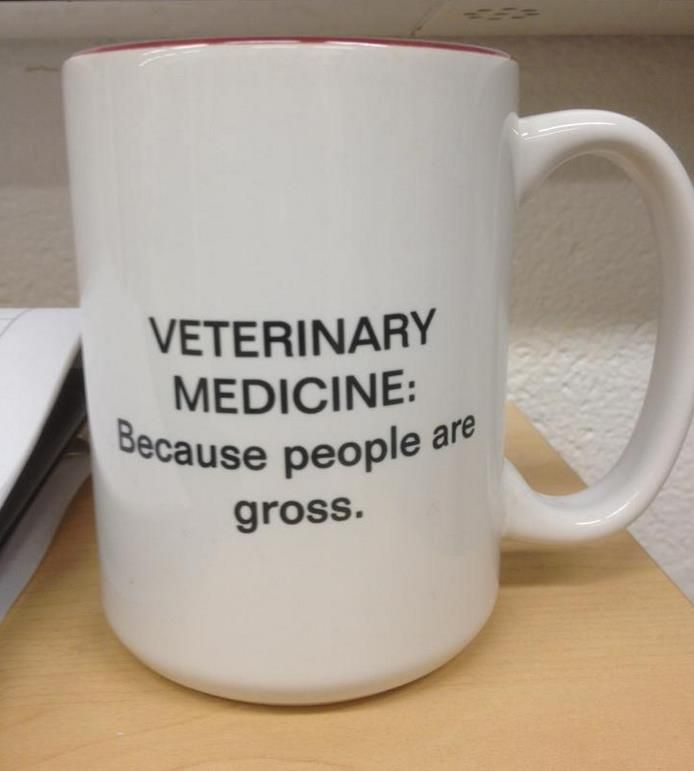 True though!!! I cannot stand human hospitals, but veterinary medicine really fascinates me lol. Also I want this mug.