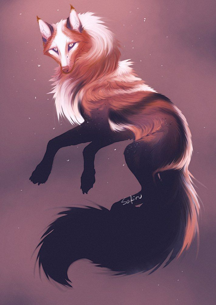 Image result for wolf drawings mystical