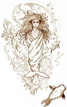 Selkie's are shapeshifters in Celtic mythology, human on land and seals in the water. In the novel, some of the characters are selkies, whether they know it or not. #thesaltgodsdaughter
