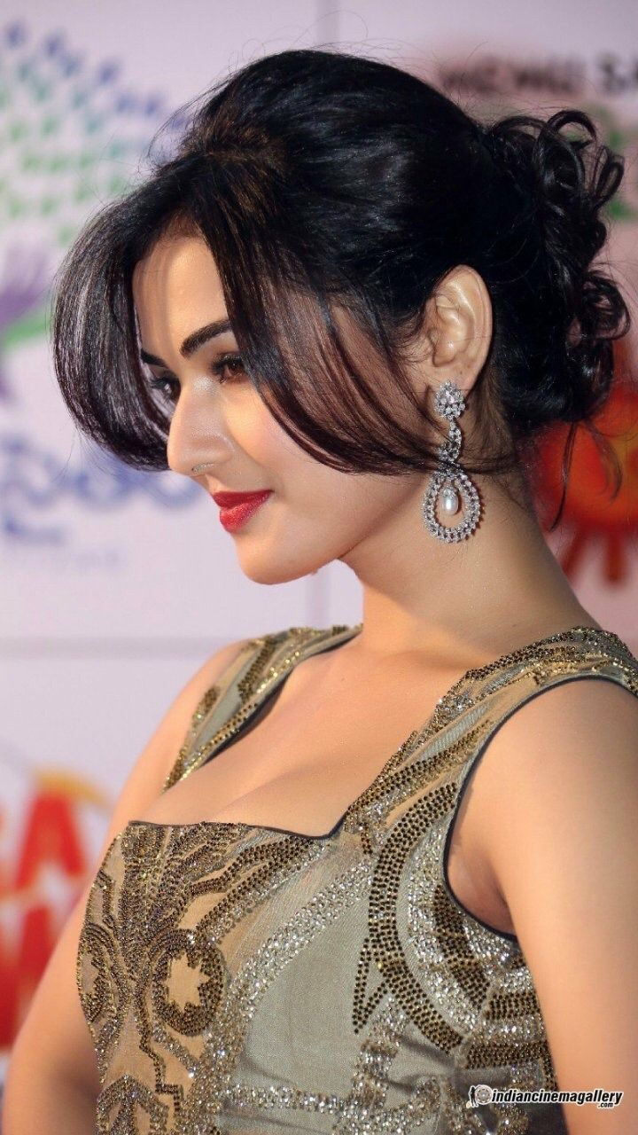 Sonal Chauhan nudes (26 photos), Pussy, Cleavage, Boobs, butt 2019