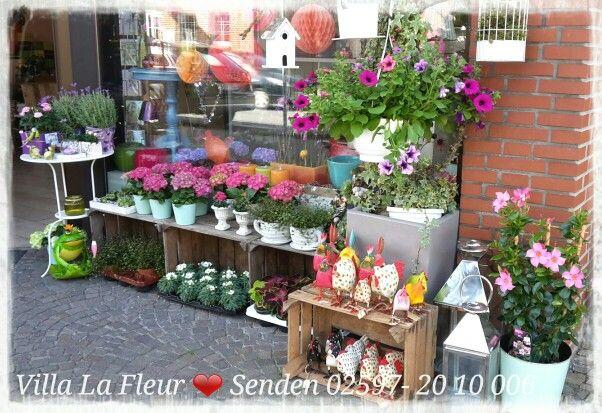 #Trauerfloristik #Hochzeitsfloristik #Events #Floristik #Blumen #Pflanzen  #Zimmerpflanzen #Inneneinrichtung