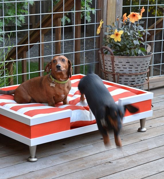 Diy Modern Pet Bed Diy Pet Bed Outdoor Pet Bed Modern Pet Beds