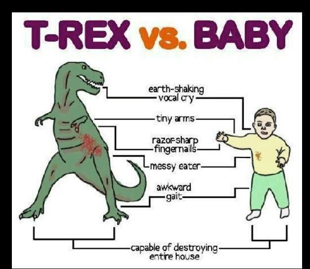 hmmm.... I just KNEW they were dinosaurs!