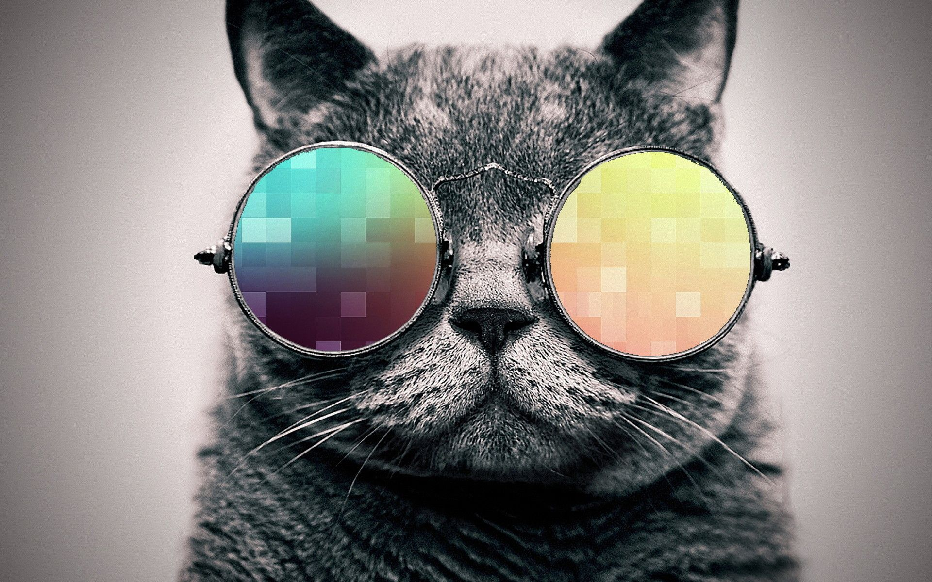 1920x1200 cool cat wallpaper. By ToValhalla Download 1920