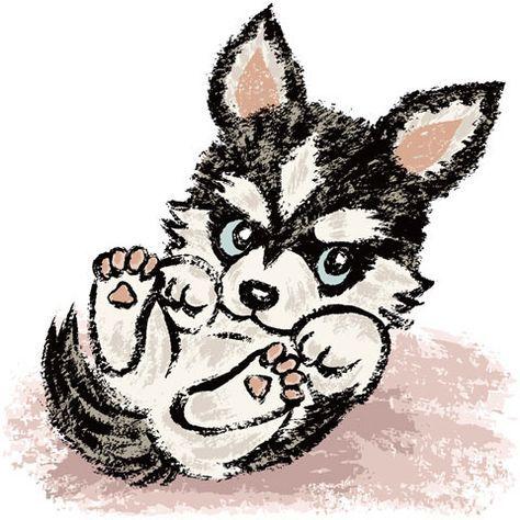 Siberian Husky | Kawaii | Pinterest | Huskies siberianos, Dibujo y Lobos