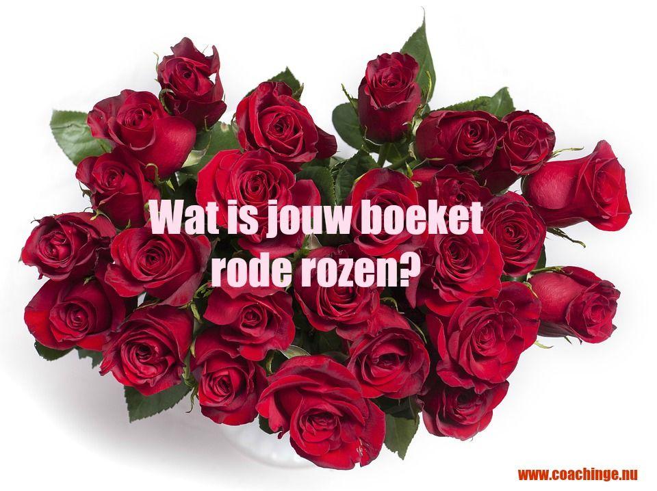 Je hoeft niet altijd een boeket rode rozen te krijgen om je te voelen alsof je een boeket rode rozen hebt gekregen. Misschien schijnt de zon wel of zie je in het randje gras waar je langs fietst wel een prachtige paardenbloem. Als je goed kijkt, krijg je iedere dag een boeketje!
