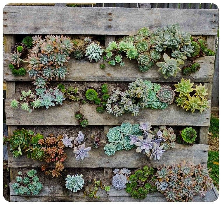 jardines verticales con palets - Jardin Vertical Con Palets
