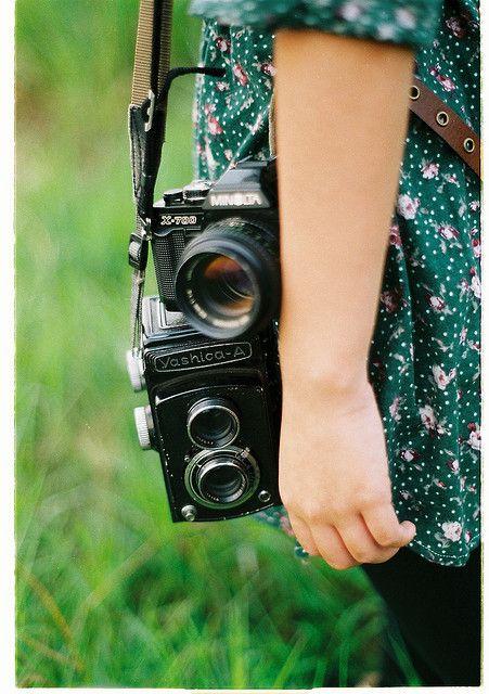 Vintage Cameras, Hong Nhung Tran