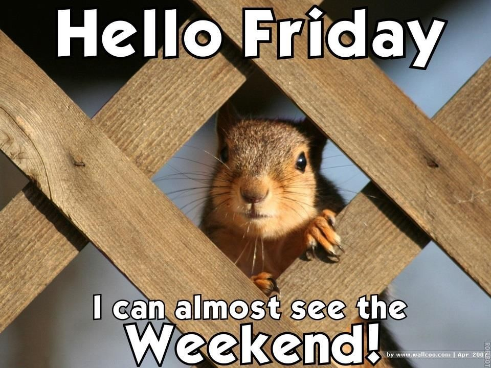 Hello Friday I Can Almost See The Weekend friday happy friday tgif good morning… #fridayquotes