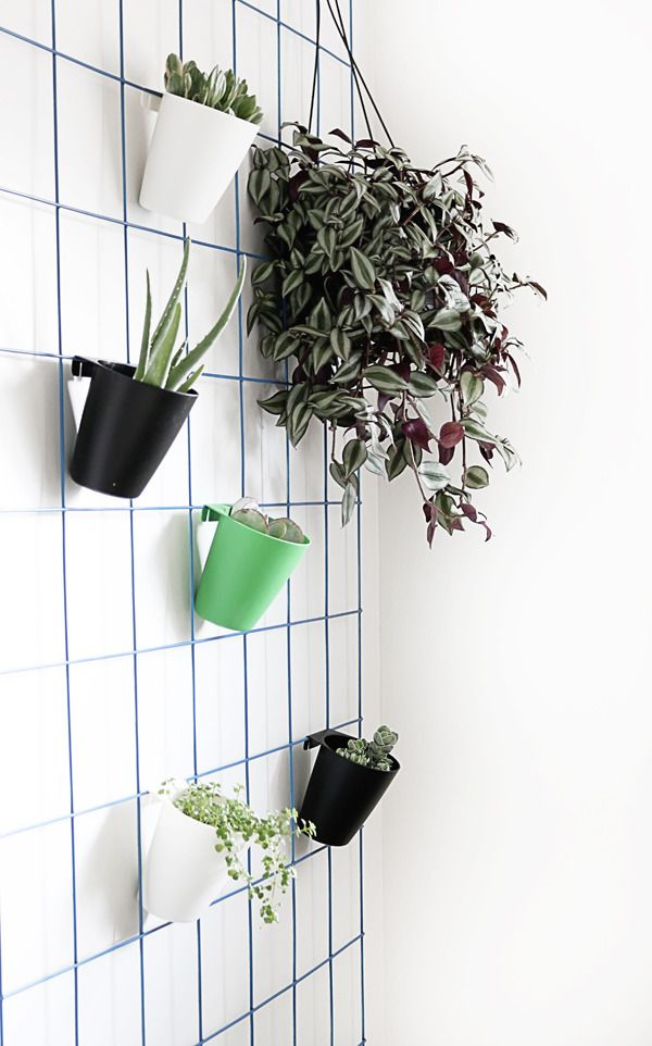 Make This Super Easy Diy Hanging Plant Wall Wall Plant Hanger