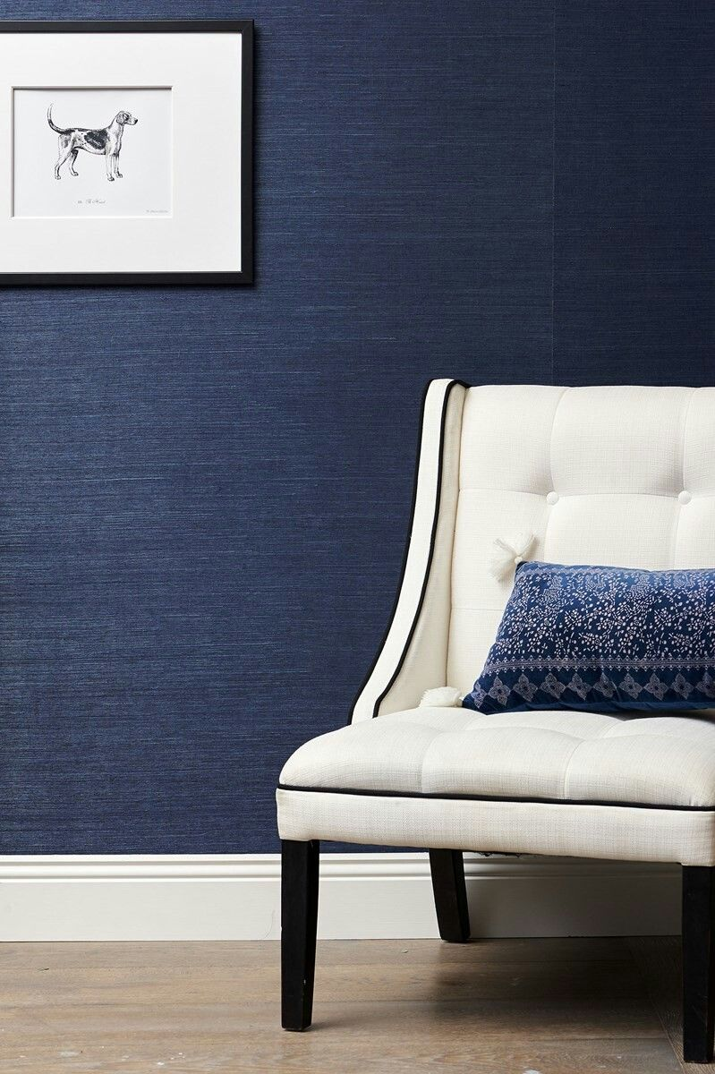 Pin by Tilly Bowman on office Blue feature wall bedroom