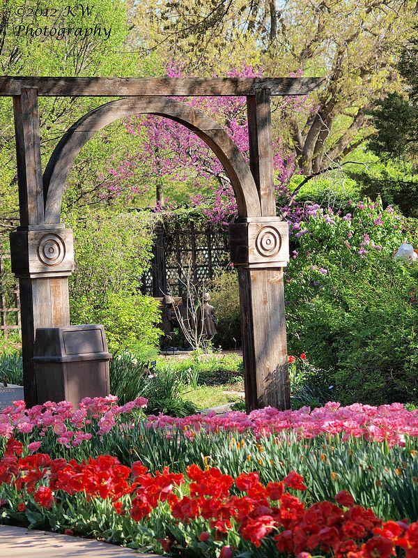 Tulips | Kansas, Gardens and Kansas usa