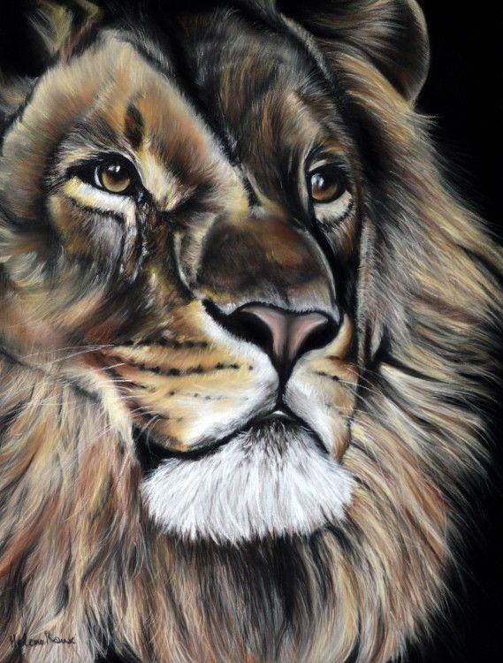 Dessin d'un lion d'Afrique réalisé au pastel sec sur ...
