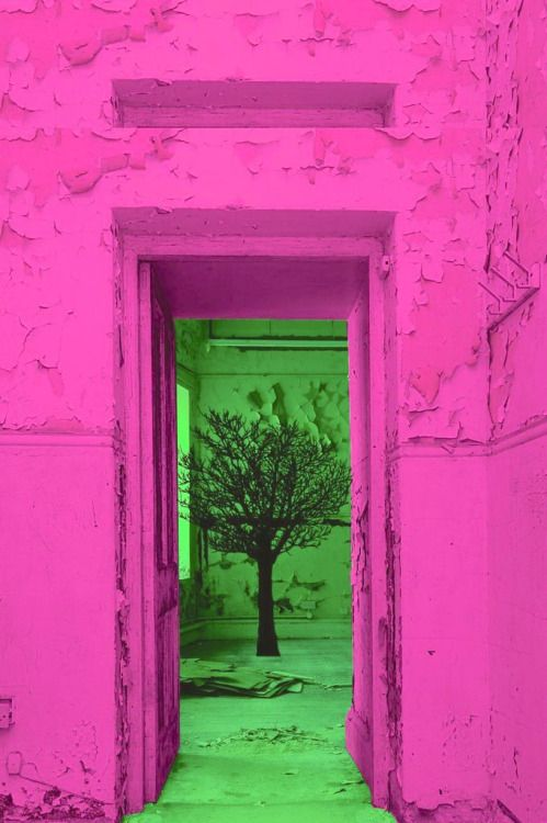 Pin By Sharon Gervais On Pink And Green Green Backgrounds Green Aesthetic Backdrops Backgrounds