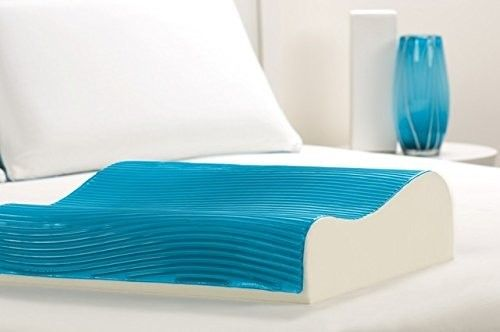 Memory Foam and Hydraluxe Gel Contour Standard Pillow
