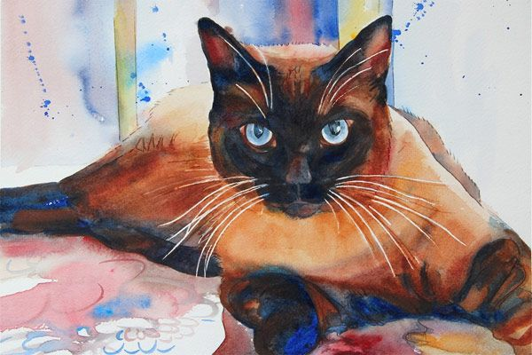 Siamese cat by watercolor artist Carol Boudreau, one of my fav artists!