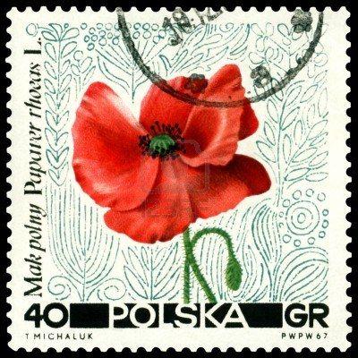 Google Image Result for http://us.123rf.com/400wm/400/400/blulake/blulake1108/blulake110800041/10393736-poland--circa-1967-a-stamp-printed-in-poland-shows-flower-papaver-rhoeas-circa-1967.jpg