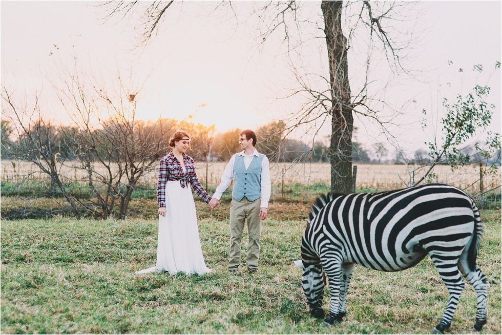 I WANT A PICTURE WITH A ZEBRA!