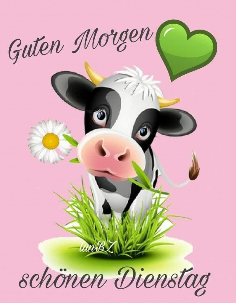 Pin Von Marion Fatone Auf Dienstag Guten Morgen Dienstag