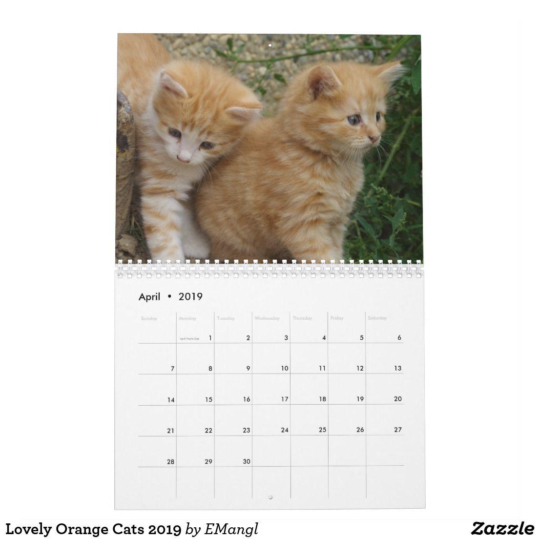Lovely Orange Cats 2019 Calendar Orange Cats Cats Cat Shop