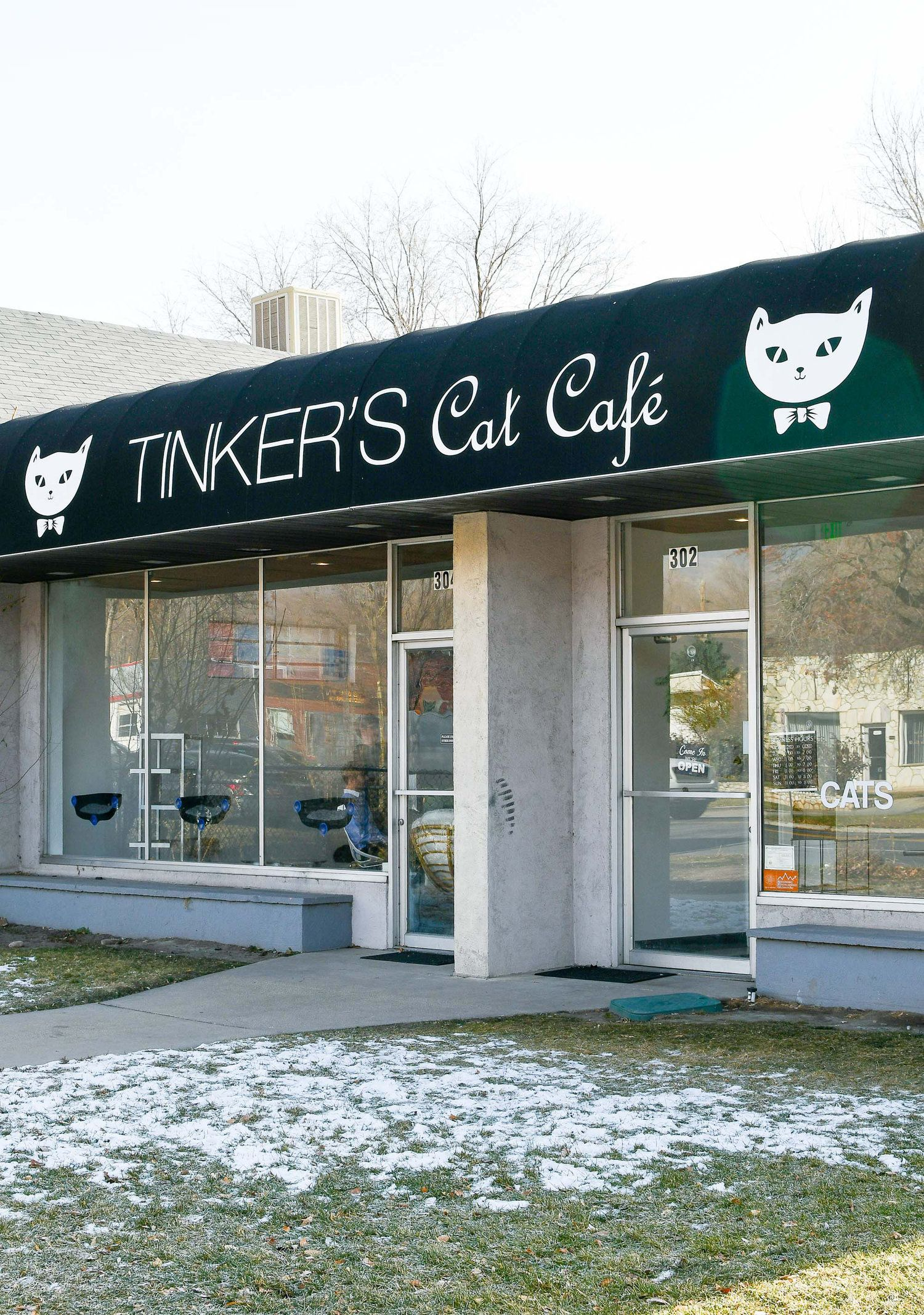 Tinker S Cat Cafe Is A Completely Cat Themed Catopia Of A Cafe In Utah Only In Your State Cat Cafe Cat Theme Cafe