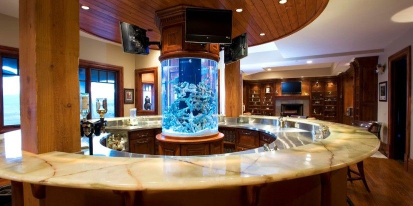 Startling Fish Tank Decorations Ideas For Home Bar Traditional
