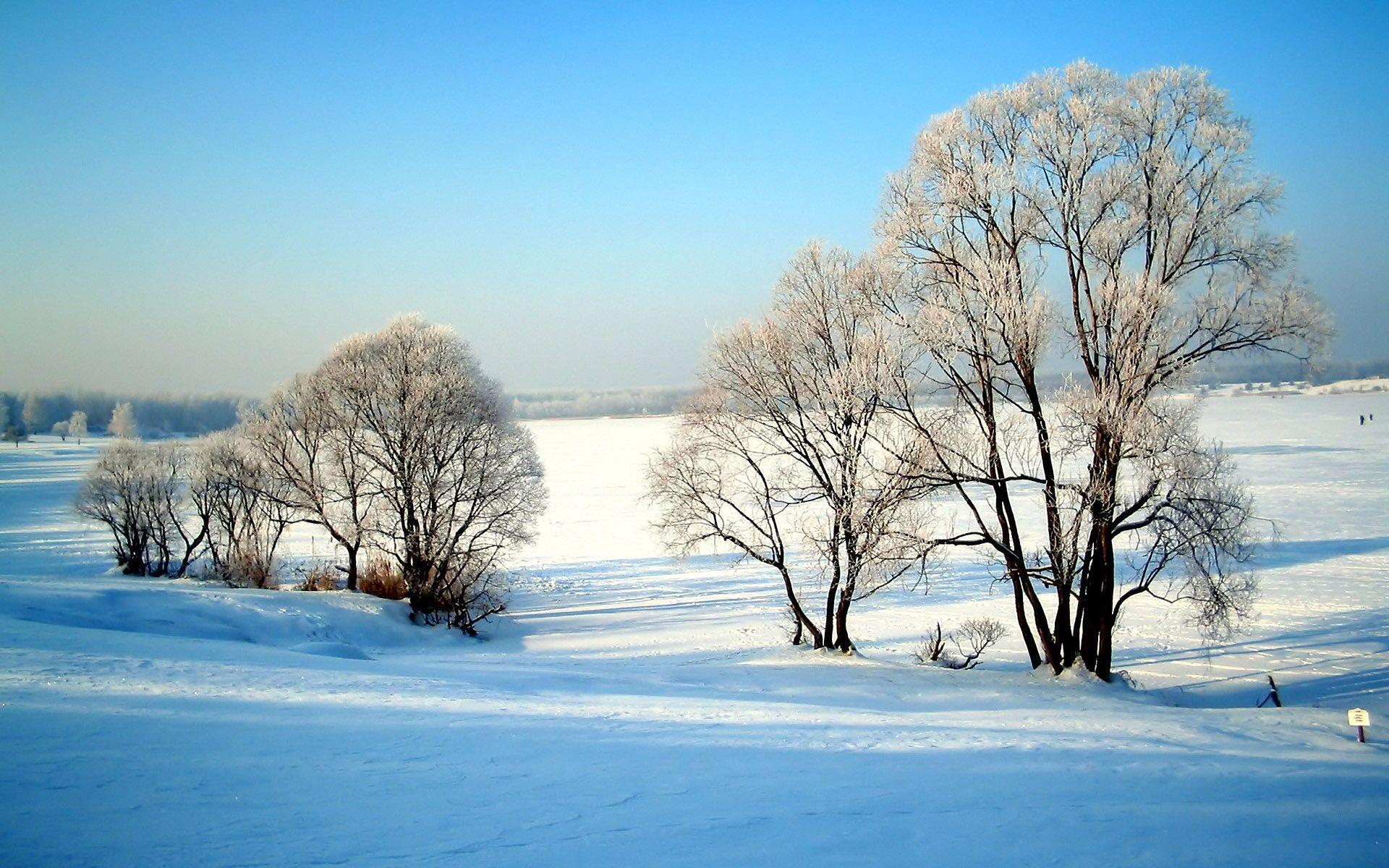 1920 1200 Widescreen Winter Snow Scenes Winter Wallpaper Winter