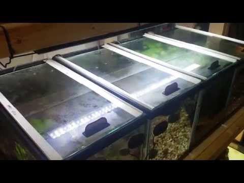 How To Diy Sliding Aquarium Gl Lids Tops You