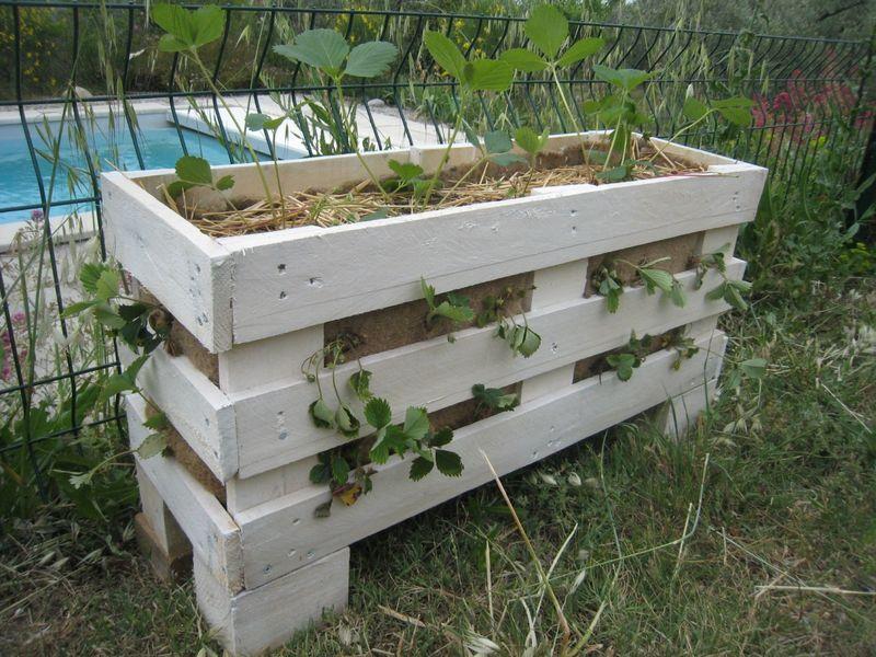 des jardini res pour les fraises en r cup de palettes. Black Bedroom Furniture Sets. Home Design Ideas