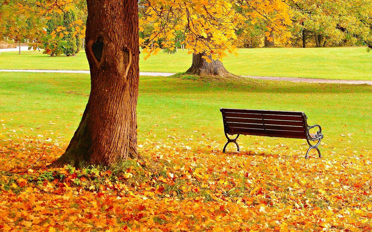 Autumn Wallpaper - Autumn Wallpaper (35867675) - Fanpop ...
