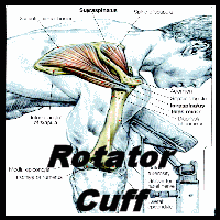 Stretching: How to Stretch the Rotator Cuff