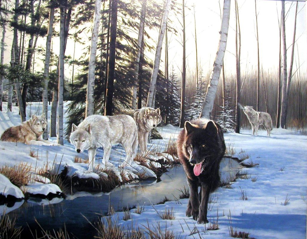 Wolves In Snow Painting By Bob Travers Wolf World