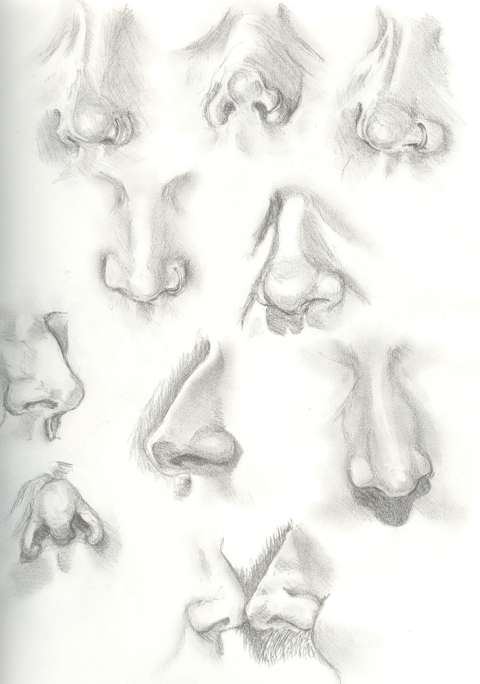 Pin von ADR auf Dibujos   Pinterest   Anatomie, Mund und Zeichnen