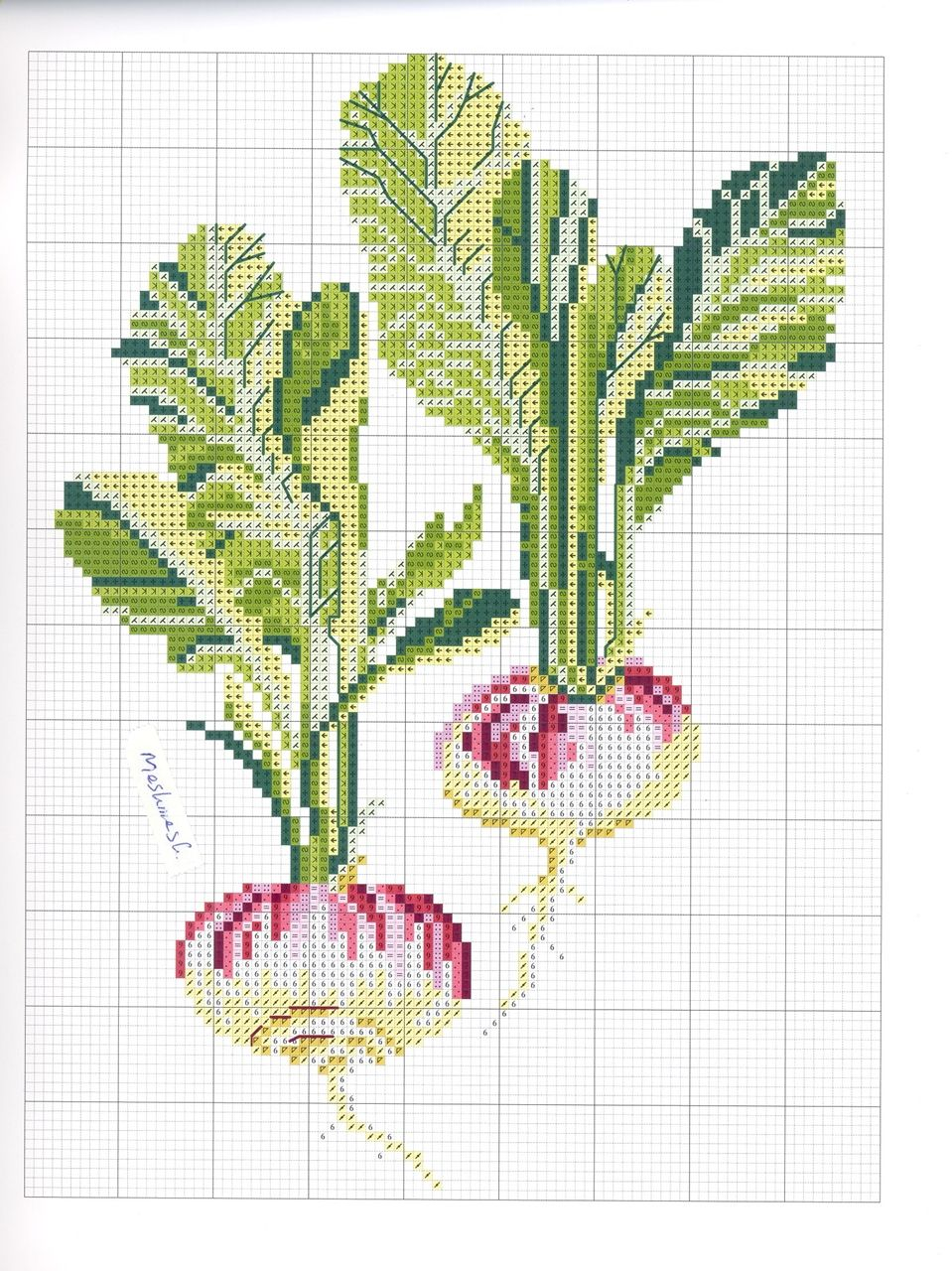 Pin von Cheryl Hanson auf Seed packages | Pinterest