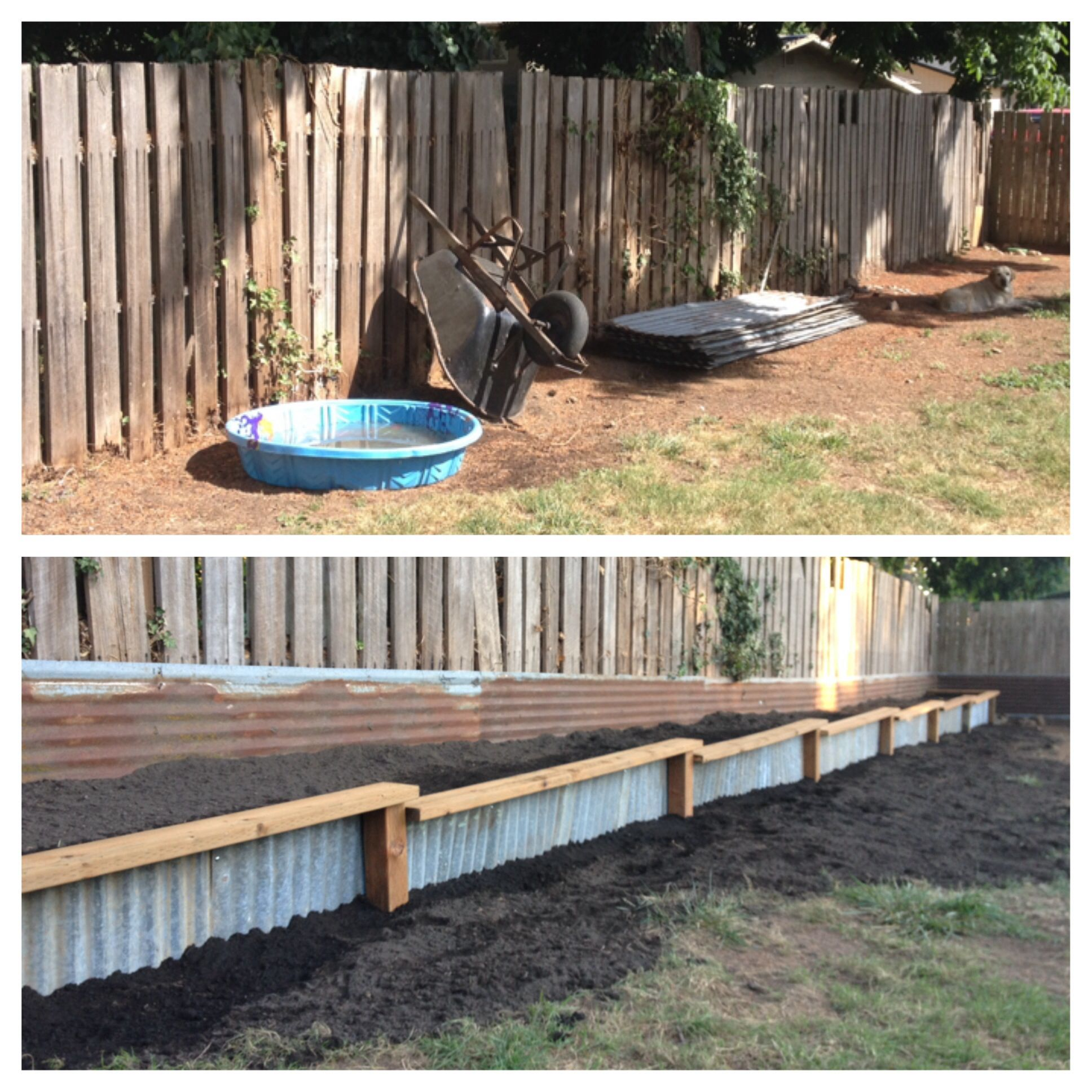 Landscaping Border Before After Reclaimed Corrugated Metal Metal Garden Edging Garden Edging Landscape Borders