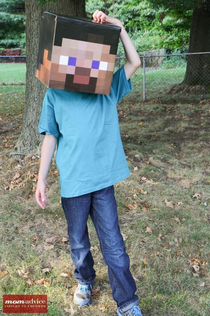 10 DIY Minecraft Costume Ideas Costumes, Homemade halloween and - minecraft halloween costume ideas