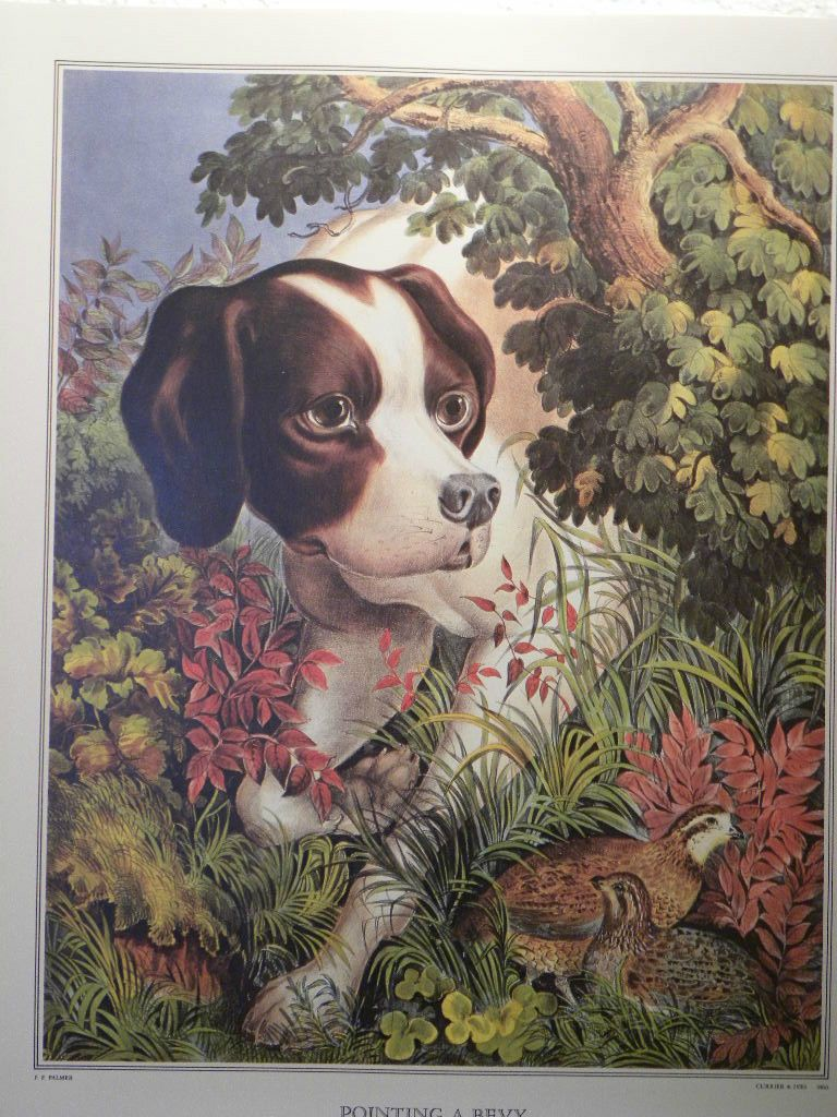 Book Illustration from The Great Book of Currier and Ives America Brown Dog | eBay
