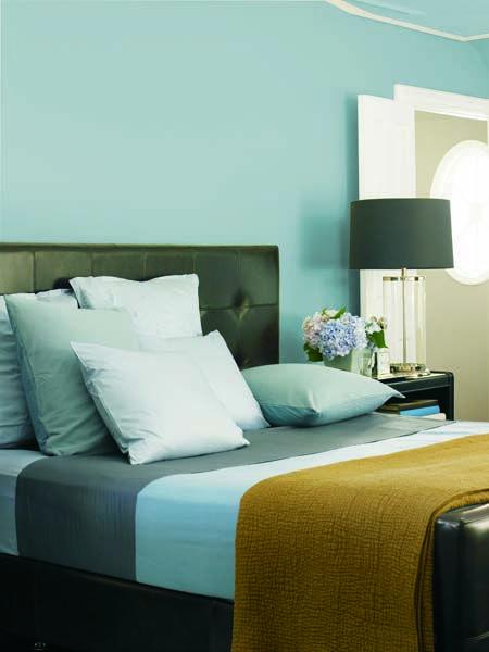 dunn edwards paints paint colors wall frozen tundra de5793 trim swiss coffee dew341 click. Black Bedroom Furniture Sets. Home Design Ideas