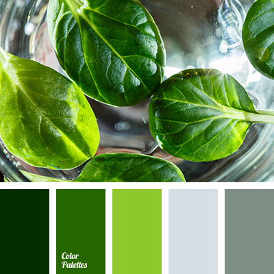 Basil Color Matching Of Leaves Dark Green Gray Shades Grey Lime Olive Pale