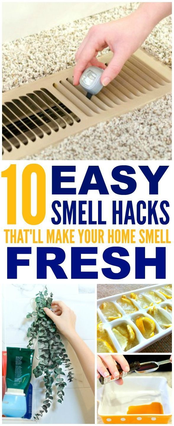 10 brilliant ways to make your home smell amazing life hacks life