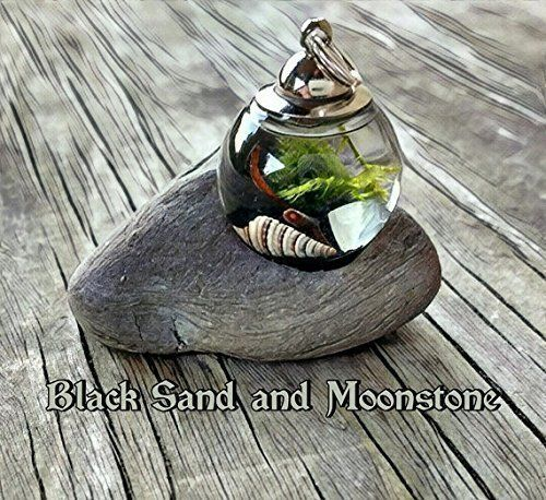 Beach in a Bottle Pendant Orb - Metal Top with Rubber Seal - Live Plant Jewelry - Marimo and Java Moss