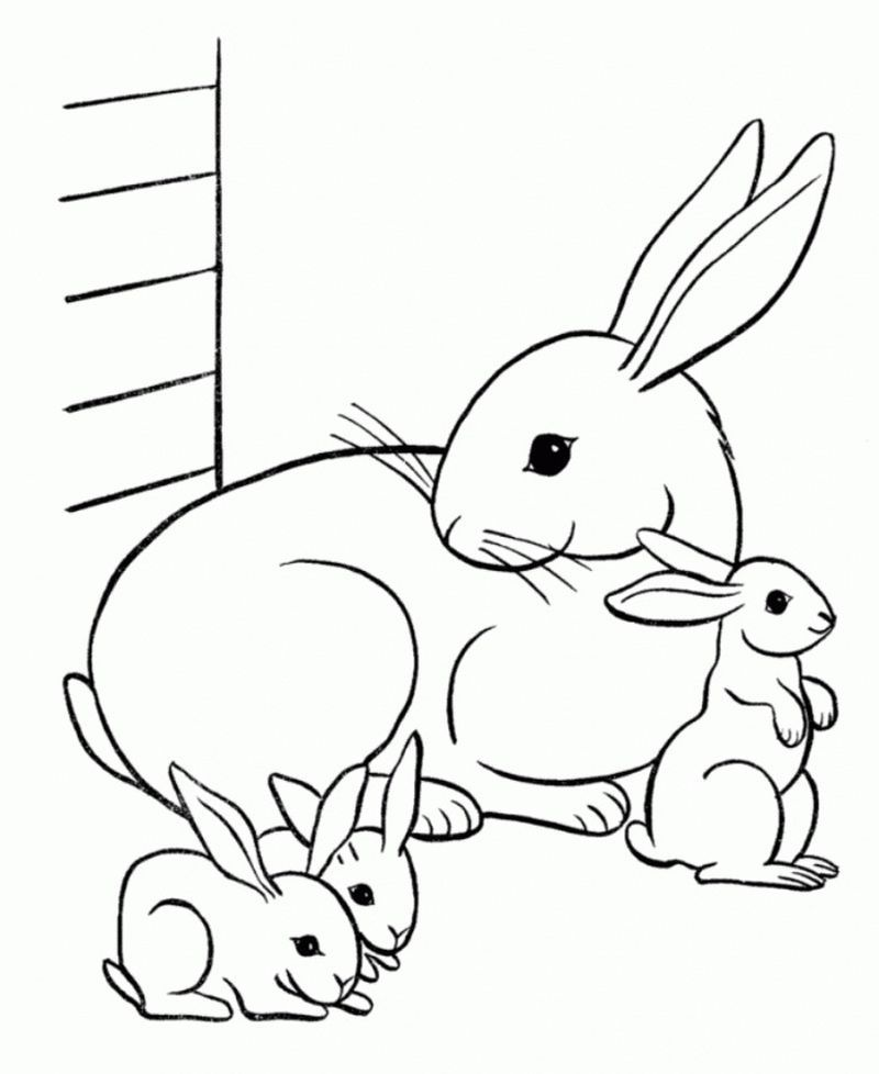 Alice In Wonderland White Rabbit Coloring Pages In 2020 Bunny Coloring Pages Butterfly Coloring Page Animal Coloring Pages