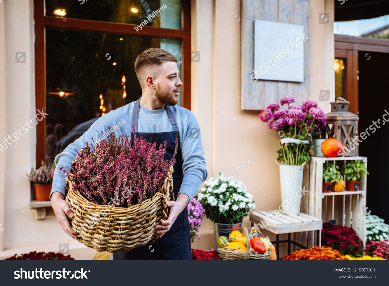 Man In Apron Holding Basket With Vibrant Pink Common Heather Calluna Vulgaris Looking Away Over Window Storefront In 2020 Aprons For Men Photo Editing Stock Photos