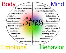 the mental stress caused by peer pressure Peer pressure also plays a part in eating disorders when a friend's dissatisfaction with her own body influences how other friends feel about their bodies a growing number of teens are first becoming exposed to eating disorders through classmates who binge, purge, or starve themselves.