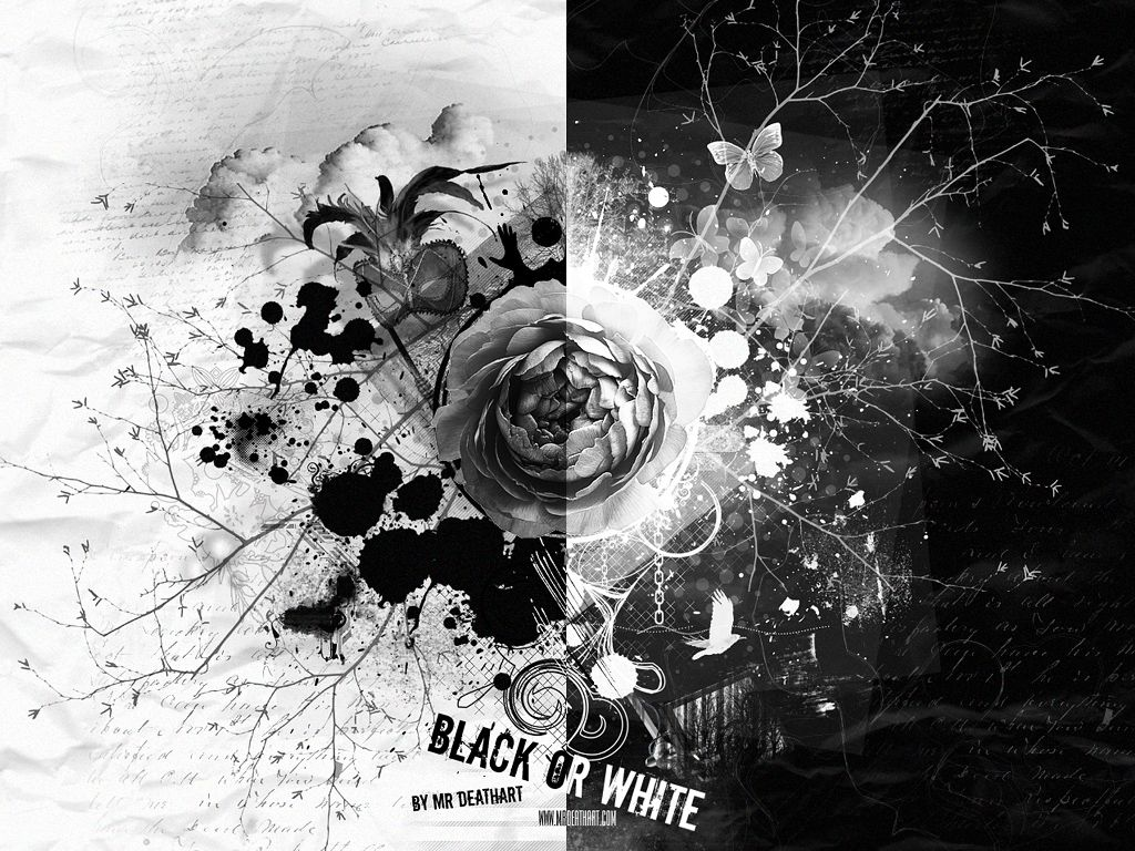 black and white download black or white wallpaper black and