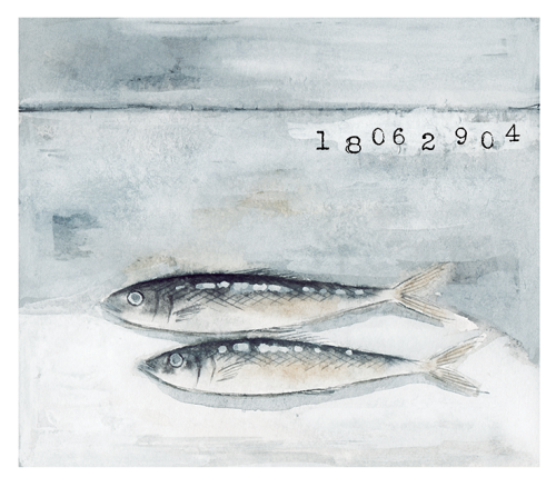 K Y O K O #fish #food #curynalyarts #illustration #drawing # painting # art