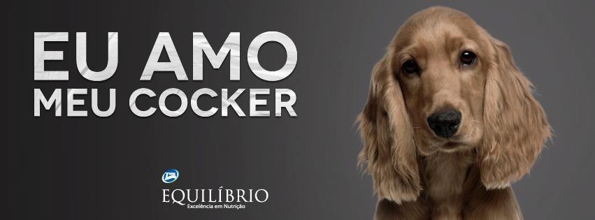 Chamegar a orelhinha macia de um Cocker e ver o jeito doce dele te olhar, não tem preço <3 #Eu_Amo_Todas_as_Raças #Cocker #Cachorro