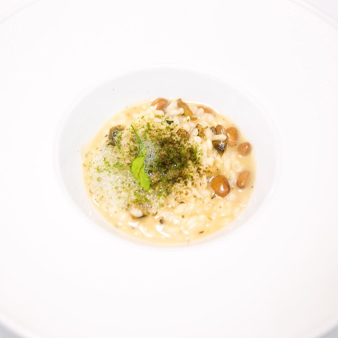 Risotto arborio: Heirloom beans | wild mushrooms | huitlacoche ...