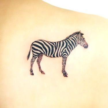 Simple Zebra Tattoo Idea Alice In Wonderland Pinterest Tattoos