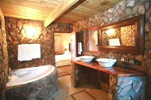 Love the stone work in this gorgeous bathroom!
